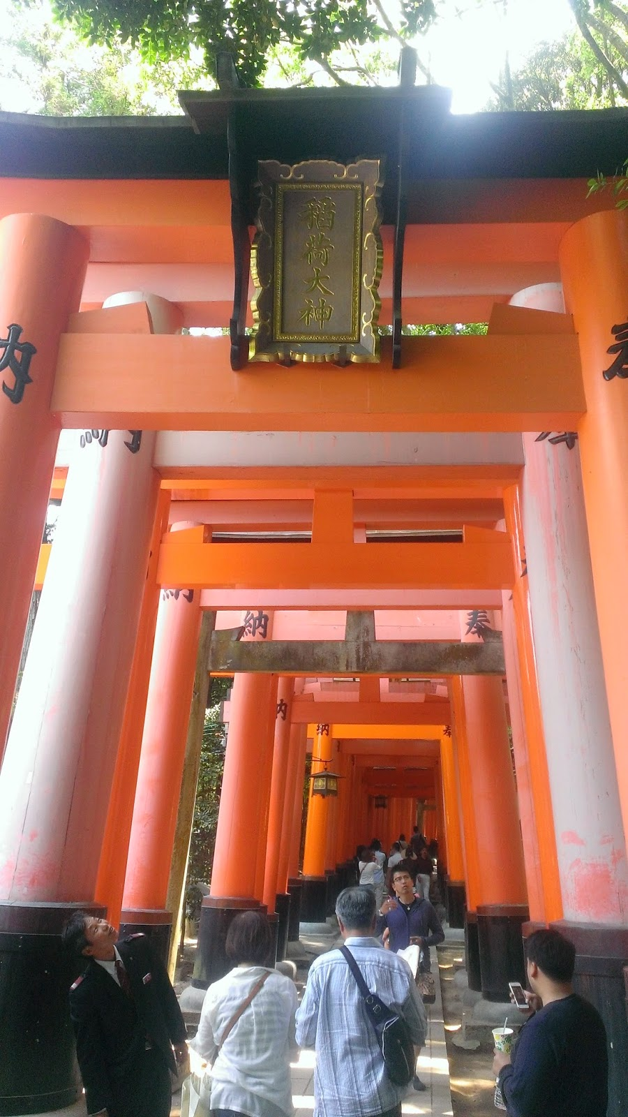Some of the Senbon Torii