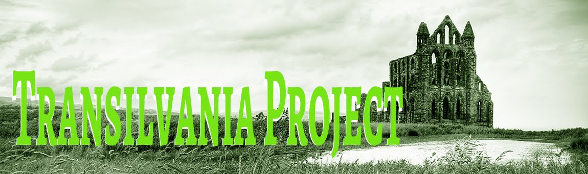The Transilvania Project