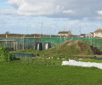 St Ives Allotment - Compost Bins