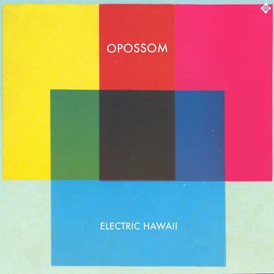 http://www.acrossthedays.com/across-the-music/electric-hawaii-dopossom-la-retro-pop-baroque-dansante/