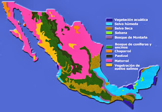 ZONAS CLIMATICAS EN MEXICO Ecosistemas+de+mexico+2