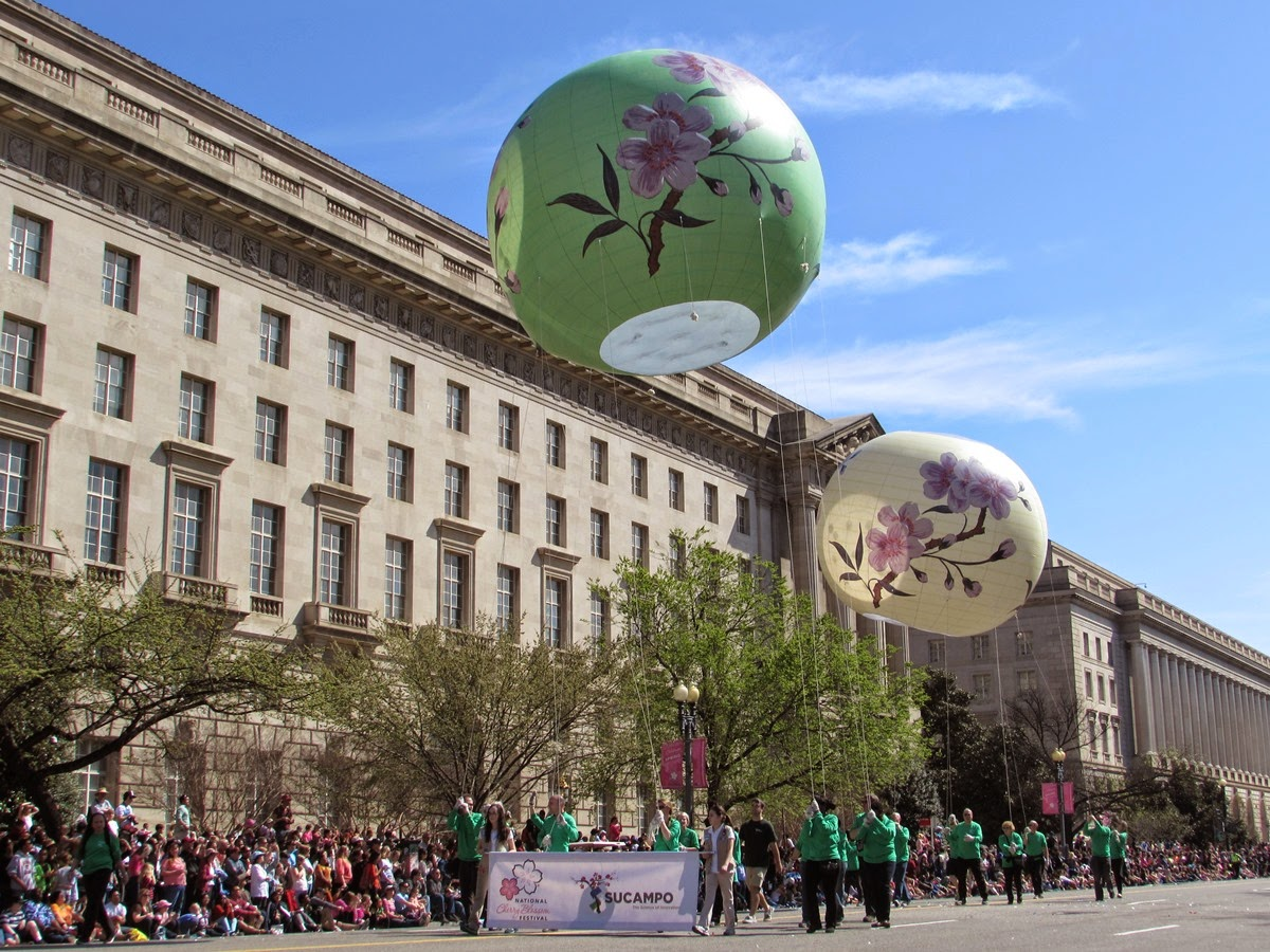 Cherry Blossom parade floating balloons