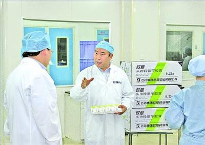 石藥集團 1093 主席 蔡東晨
