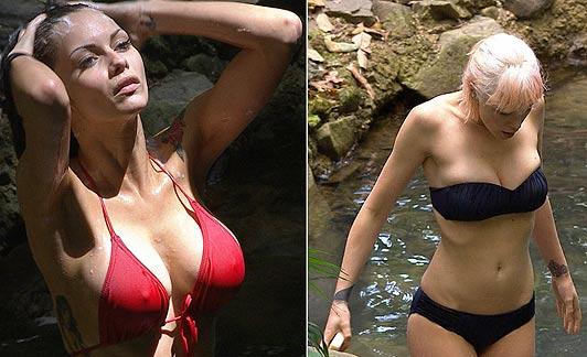 celebrity bikini 2012