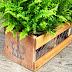اصنع بنفسك حوض لنباتات الزينة من الخشب