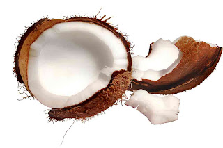 health_benefits_of_eating_coconut_fruits-vegetables-benefits.blogspot.com(12)