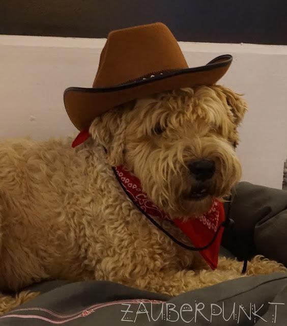 Hund für Cowboy