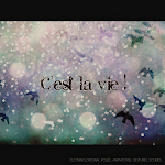 ::C&#39;est la vie!::