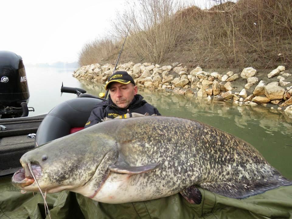Dino Ferrari With The 280 Pound Catfish