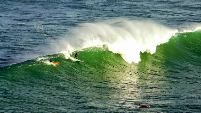 surf menakoz surf30 09
