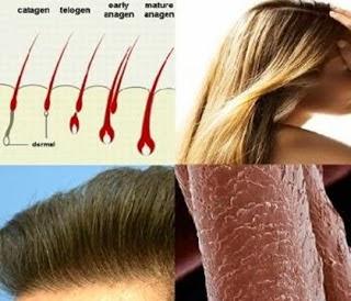 Quarter Of An Inch Haircut 7