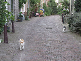 Parallelstraat