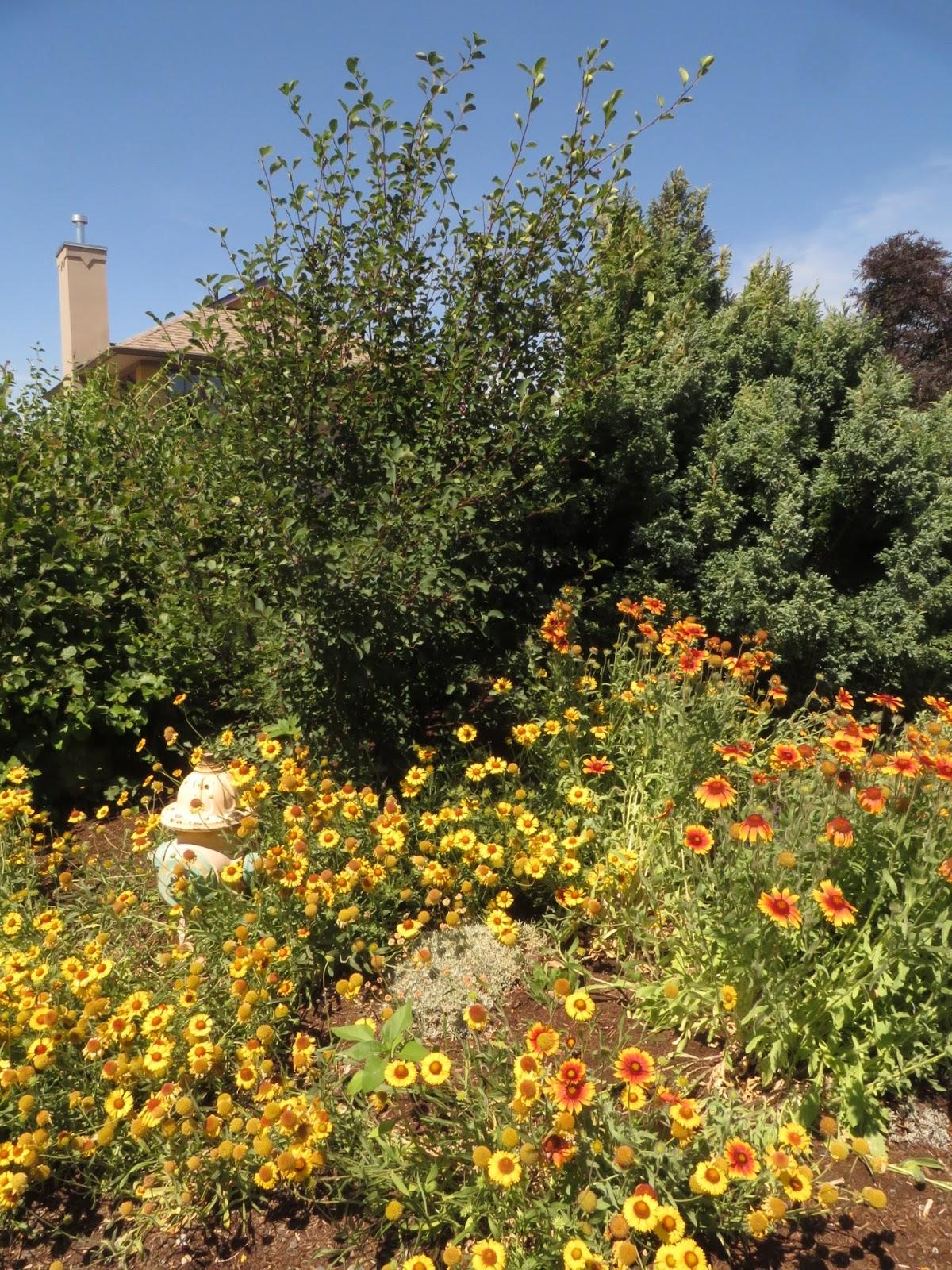 A special garden in hood river for Outer garden