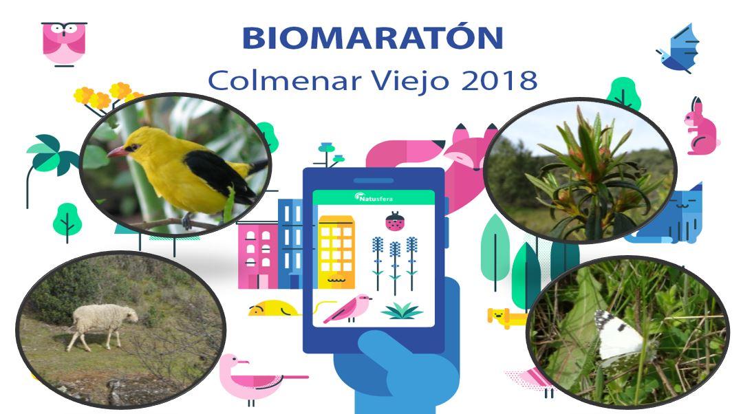 Biomaratón CNC 2018