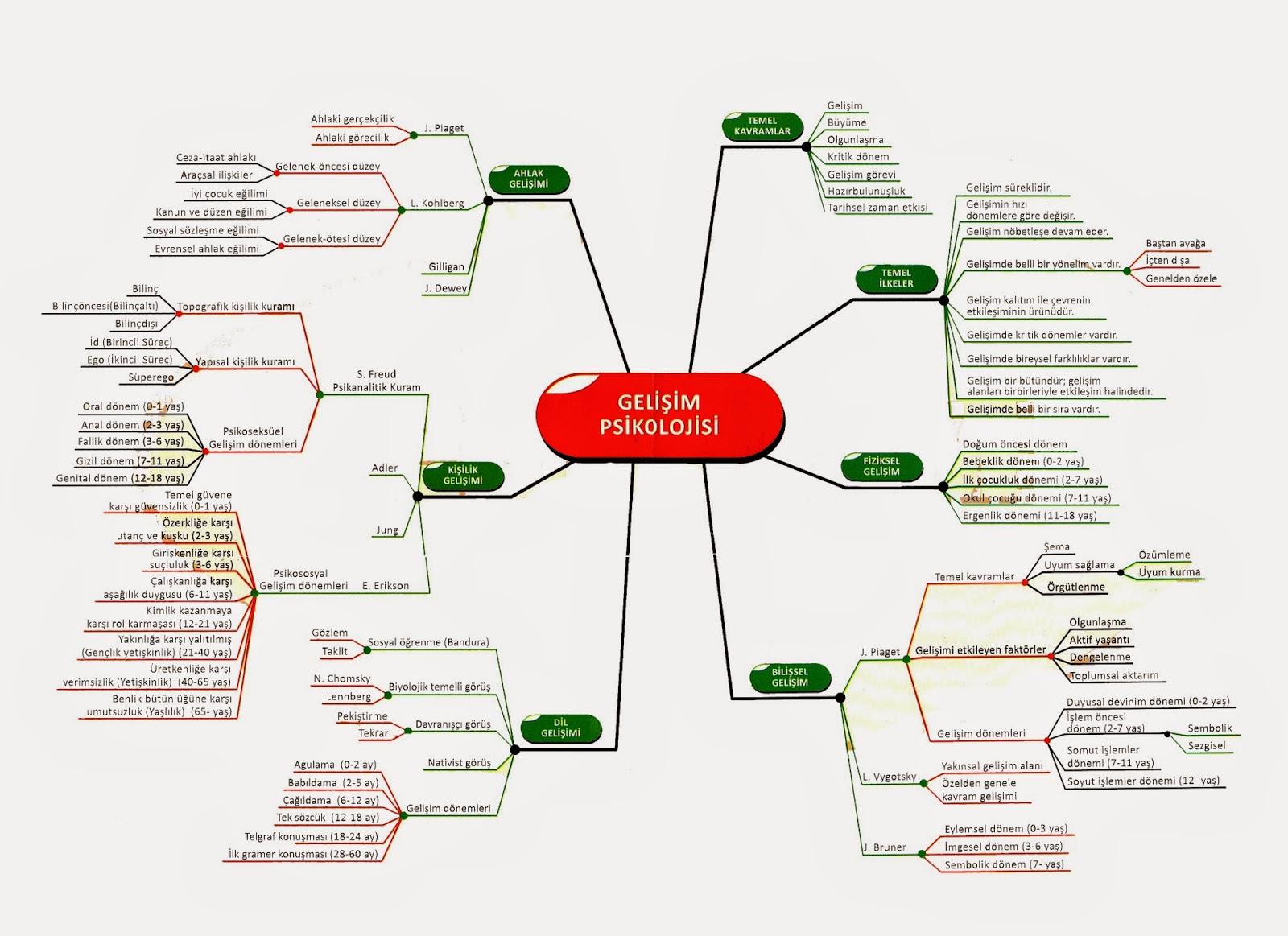 Bilişsel harita: kavram, araştırma, özellikler