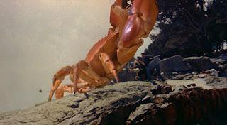 Mysterious Island 1961 Bee