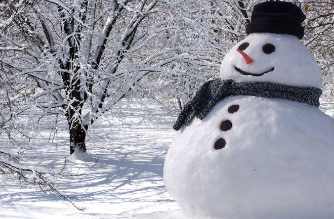 Составить предложения где употребляется слово зима