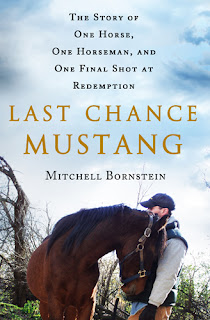 http://booksforanimallovers.com/home/417-last-chance-mustang.html