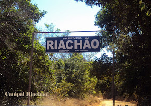 CAMPAL  RIACHÃO 2012 !