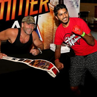Social electronic magazine sting and shawn michaels meet the wwe universe during summerslam week in new york city photos m4hsunfo Image collections