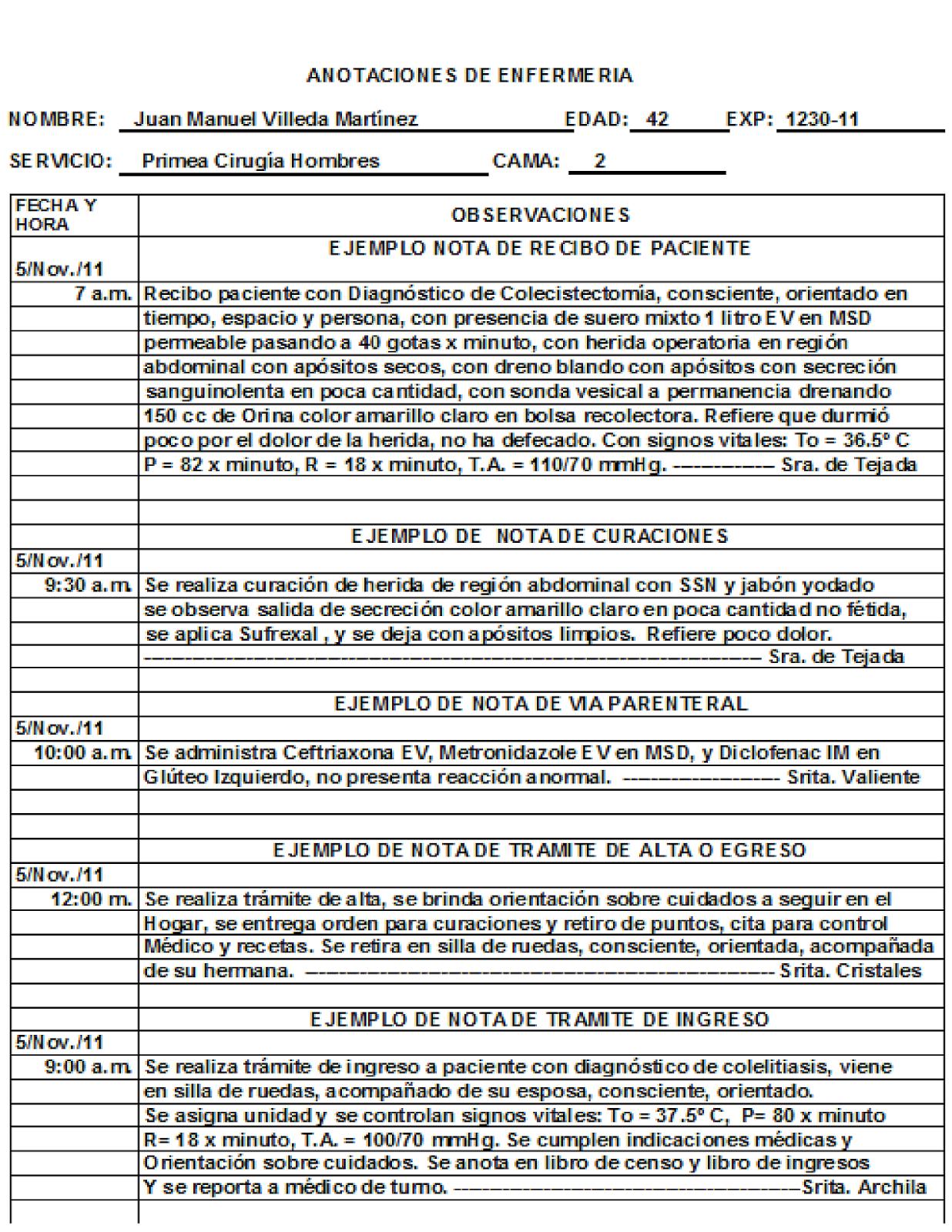 CLASES FUNDAMENTOS DE ENFERMERIA: Notas de Enfermería