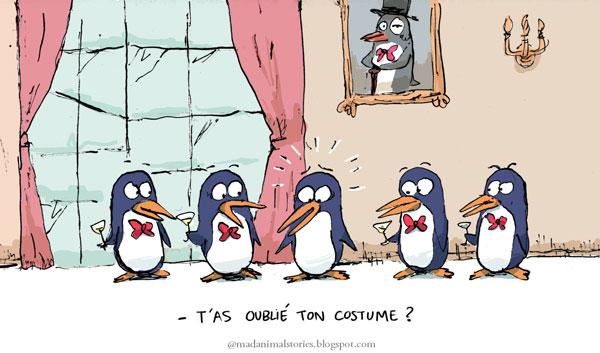 pingouin soirée ambassadeur