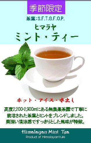 紅茶の試飲会のお知らせ