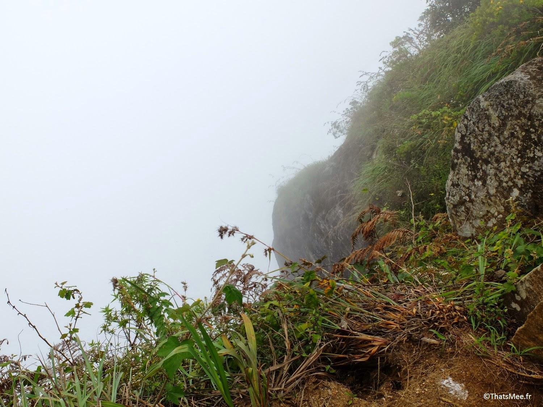 Brume Horton Plains World's End Sri Lanka parc naturel