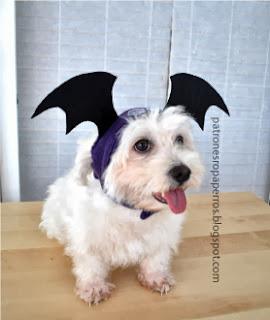 gorro de halloween para perro