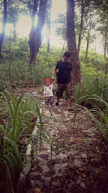 Hutan-Jompie-Parepare