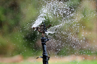 In Charlotte spring start up irrigation systems are a great way to head start on the season's lawn care,