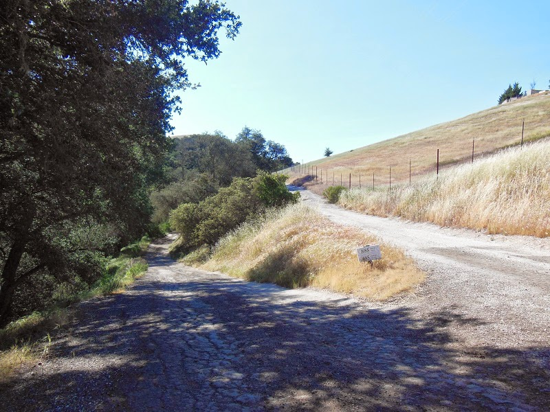 Paso Robles Back Road, © B. Radisavljevic