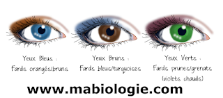 Phénotype