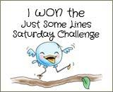 1e prijs bij Just Some Lines Blog