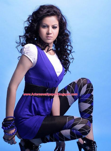 All Acterss Wallpapers  Riya Aggarwal Hot y 2013 And 2014