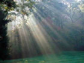 Haverá sempre luz no nosso caminho.