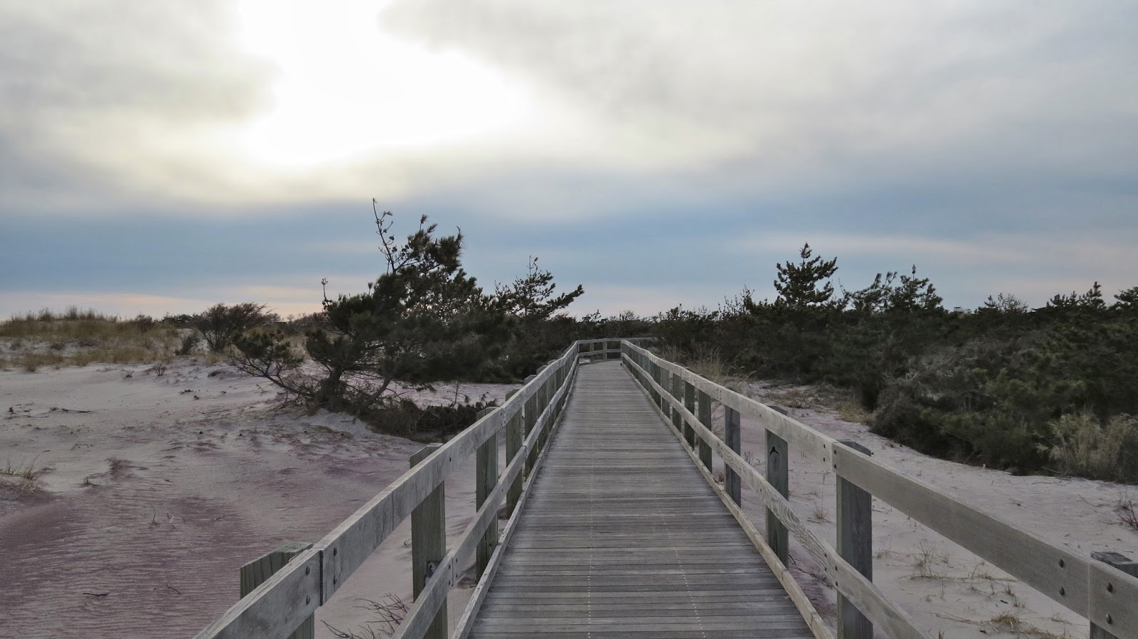 Fire-Island-Boardwalk-in-Early-Spring