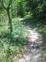 Formerly Little Used Path
