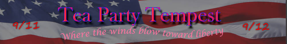 Tea Party Tempest