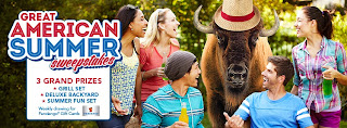 The Great American Summer Sweepstakes