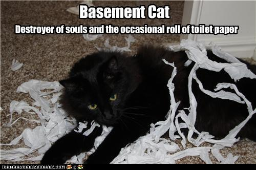 such as ceiling cat lazer cat monorail cat and basement cat