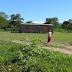 Una empresa maderera pretende cerrar una escuela de niños originarios