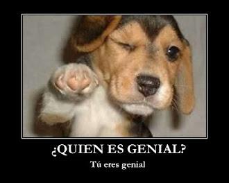 RETO CONSEGUIDO!!!