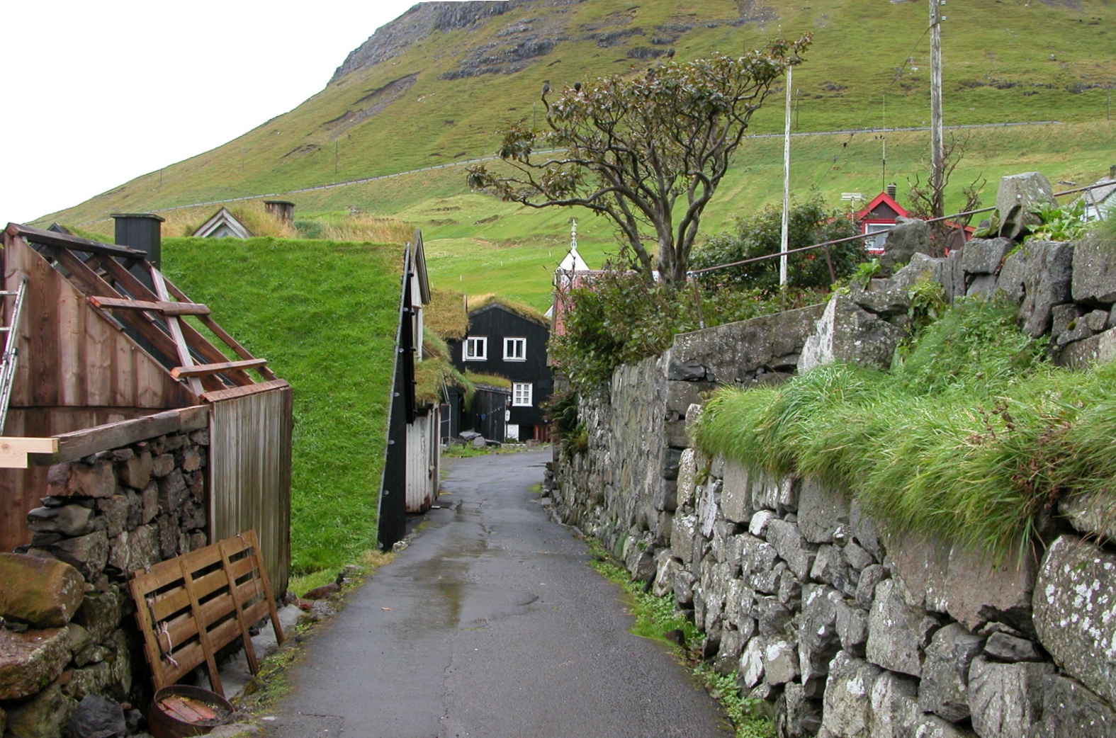 Awesome Faroe Islands Sources Of Knowledge