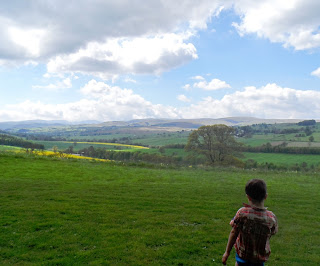 Lowther Castle and Gardens May 2013 - Taking in the view.