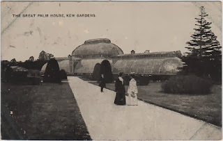 Vintage postcard of the Great Palm House, Kew Gardens