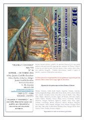 Nº 38 - Año VII - Septiembre-Octubre 2016