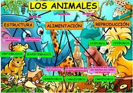 LOS ANIMALES - 2º A