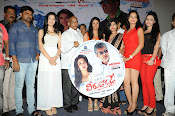 Veerudokkade movie audio launch photos-thumbnail-7