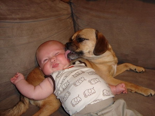 Adorable kids and their pets (25 pics) | Amazing Creatures
